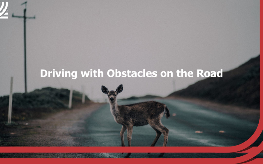 Driving with Obstacles on the Road
